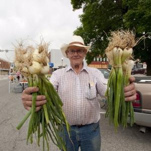Farmer's Market in Downtown Kirksville