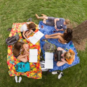 A sunny study session